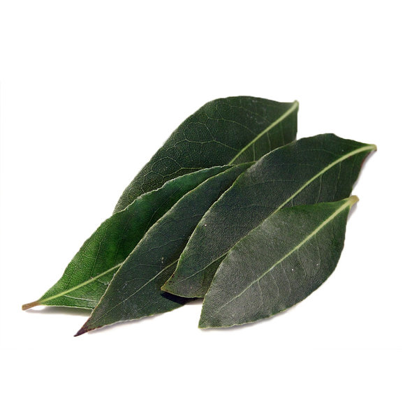 Fresh Laurel